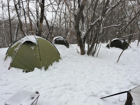 冬_雪中キャンプ_テント_降雪